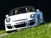 ruf-roadster-3-8-13-fotoshowimage-ae35922f-425496